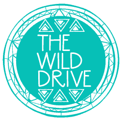 The Wild Drive | Sharing A Message of Responsible Dream Seeking, Positivity, & Authenticity